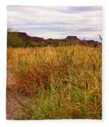 Castolon - A Ghost Town 3 Fleece Blanket