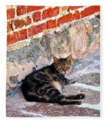 Cat Against Stone Fleece Blanket