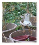 Cat In Flowerpot Fleece Blanket