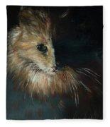 Cat In The Shade Fleece Blanket