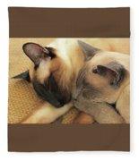 Cat Nap With Toby And Sadi Fleece Blanket