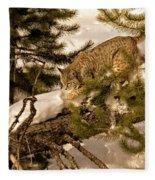 Cat Walk Fleece Blanket