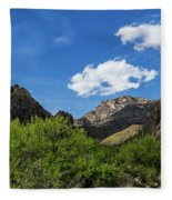 Catalina Mountains In Tucson Arizona Fleece Blanket