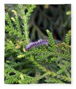 Caterpillar On Branch Fleece Blanket