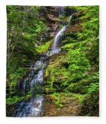 Cathedral Falls 2 - Paint Fleece Blanket
