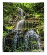 Cathedral Falls 4 - Paint Fleece Blanket