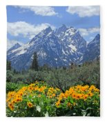 Dm9328-cathedral Group Tetons  Fleece Blanket