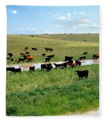 Cattle Graze On Reclaimed Land Fleece Blanket