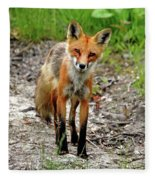 Cautious But Curious Red Fox Portrait Fleece Blanket