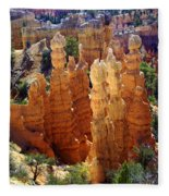 Cedar Breaks 1 Fleece Blanket