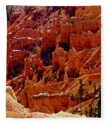 Cedar Breaks 3 Fleece Blanket