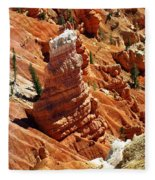 Cedar Breaks 4 Fleece Blanket