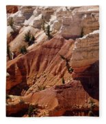 Cedar Breaks 5 Fleece Blanket