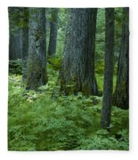 Cedar Grove Fleece Blanket