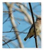 Cedar Wax Wing Fleece Blanket