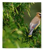 Cedar Waxwing #1 Fleece Blanket