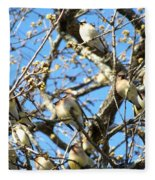 Cedar Waxwing Family Fleece Blanket