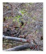Cedar Waxwings Feeding Fleece Blanket