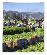 Celery Harvest Fleece Blanket