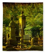 Cemetery In Charleston Fleece Blanket