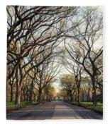 Central Park Nyc Fleece Blanket