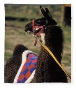 Chaco Fleece Blanket