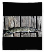Chain Pike Fleece Blanket