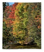 Changing Colours Of The Fall Fleece Blanket