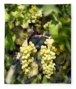Chardonnay Fleece Blanket