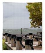 Charleston Storming Fleece Blanket