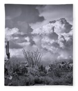 Chasing Clouds Again In Black And White  Fleece Blanket