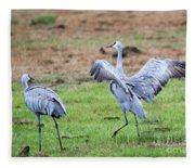 Check The Moves Fleece Blanket