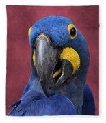 Cheeky Macaw Fleece Blanket