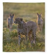 Cheetah Acinonyx Jubatus And Jackals Fleece Blanket