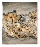 Cheetah Lounge Cats Fleece Blanket