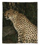 Cheetah Watching Fleece Blanket