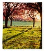 Cherry Blossom In A Park At Dawn Fleece Blanket