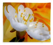 Cherry Flower In The Spring, In Profile Fleece Blanket