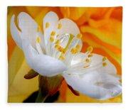 Cherry Flower In The Spring, In Profile Fleece Blanket