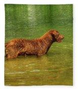 Chesapeake Bay Retriever Fleece Blanket