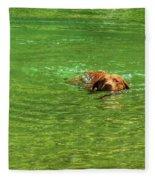 Chesapeake Bay Retriever Swimming Fleece Blanket