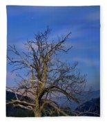 Centenary Chestnut At Blue Hour Fleece Blanket