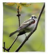 Chestnut Sided Warbler 2 Fleece Blanket