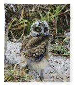 Chick Burrowing Owl  Fleece Blanket
