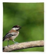 Chickadee . 40d8031 Fleece Blanket