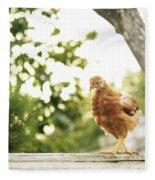 Chicken On Fence Fleece Blanket