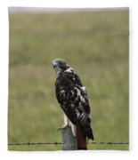 Chickenhawk Fleece Blanket
