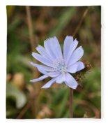 Chicory Blue Fleece Blanket