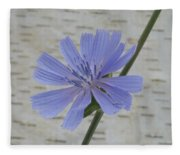 Chicory Fleece Blanket
