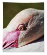Chilean Flamingo  Fleece Blanket